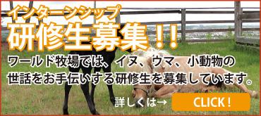 動物飼育の研修生募集
