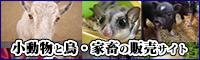 犬・猫・小動物・珍動物などのペット販売情報サイト